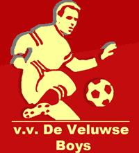v.v. De Veluwse Boys