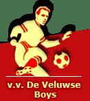 Logo Veluwse Boys
